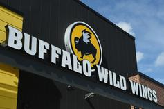 Live Rat Falls On Customer's Table While At Buffalo Wild Wings