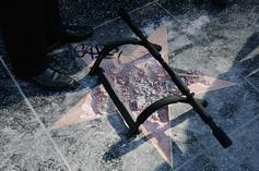 Trump's Walk Of Fame Star Boarded Up Again After Man Destroys It With Pickaxe