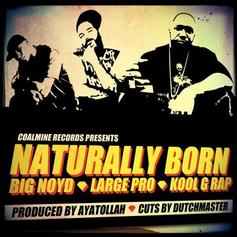 Kool G Rap - Naturally Born Feat. Big Noyd & Large Professor