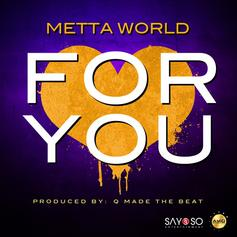 Metta World Peace - For You