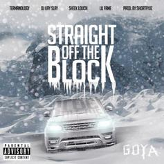 Termanology - Straight Off The Block Feat. Sheek Louch, Lil Fame & DJ Kay Slay