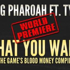 Tyga - What You Want Feat. Pharaoh Jackson