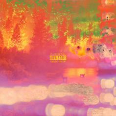 Pries - After The Forest Fire