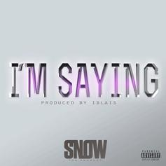 Snow Tha Product - I'm Saying
