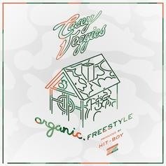 Casey Veggies - Organic (Freestyle)