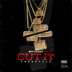 Shy Glizzy - Cut It (Freestyle)