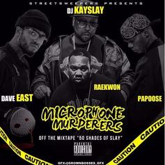 DJ Kay Slay - Microphone Murderers Feat. Dave East, Raekwon & Papoose