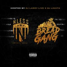 "MoneyBagg Yo Delivers Compilation Project ""NLESS ENT x Bread Gang"""