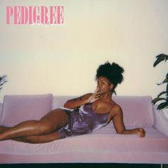 "Ari Lennox Is Back With Her New Song ""Pedigree"""