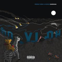 "Freddie Gibbs, Madlib, Black Thought & Yasiin Bey Wax Cynical Over ""Education"""