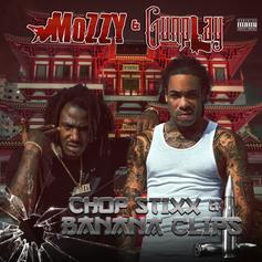 "Mozzy & Gunplay Are Back Again With ""Pain & Struggle"""