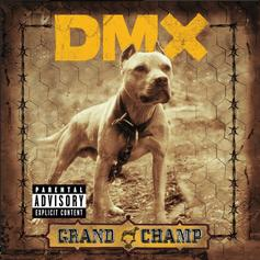 "DMX Linked With 50 Cent & Styles P On Gangsta ""Shot Down"""