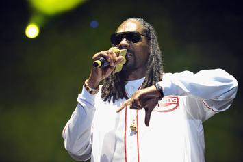 Snoop Dogg Is Suing To Get A Piece Of Colt 45's Brand Value