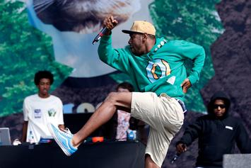 Tyler, The Creator Is Getting His Own TV Show On VICELAND