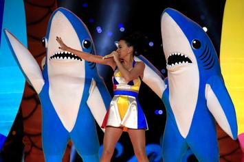 Left Shark From Super Bowl 2015 Speaks On His Viral Antics For First Time