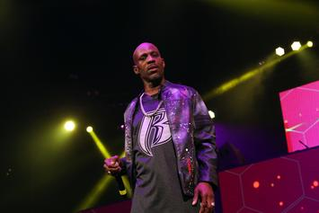 DMX Prosecutors Want Him To Serve 5 Years For Tax Evasion: Report