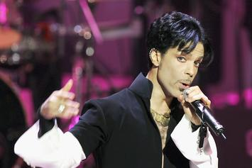 Prince's Ex-Wife Doesn't Believe Claims That He Was Violent Or Used Hard Drugs