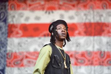 "Joey Bada$$ Says Capital Steez' Mom Is in Control Of ""King Capital"" Release"