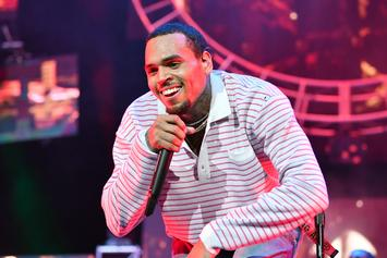 Chris Brown Released From Police Custody Without Charges: Report