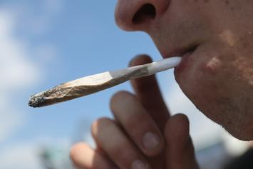 World Health Organization Admits They Were Wrong About Marijuana