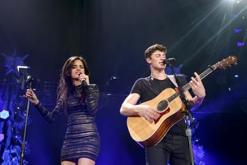 "Shawn Mendes & Camila Cabello's ""Señorita"" Video Have Fans Going Wild"