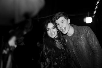 Camila Cabello Opens Up About Falling In Love & It's Clearly About Shawn Mendes