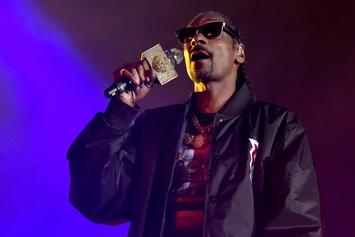 Snoop Dogg's Greatest Hits Are Being Turned Into Lullabies On Kid-Friendly Album
