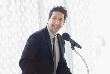 """David Schwimmer Gets Dragged For Overlooking """"Living Single"""" With """"Friends"""" All-Black Cast Idea"""