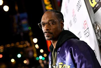 """Snoop Dogg's """"Drop It Like It's Hot"""" Used For DNC Mail-In Voting Campaign"""